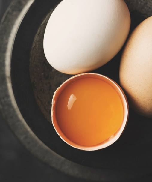 Sept_Delicieux_aliments_proteines-Oeufs-3