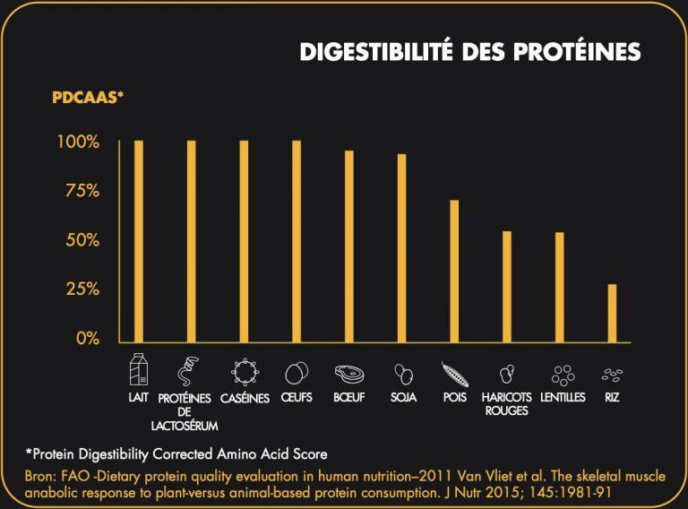 fr-proteines-visuel-02
