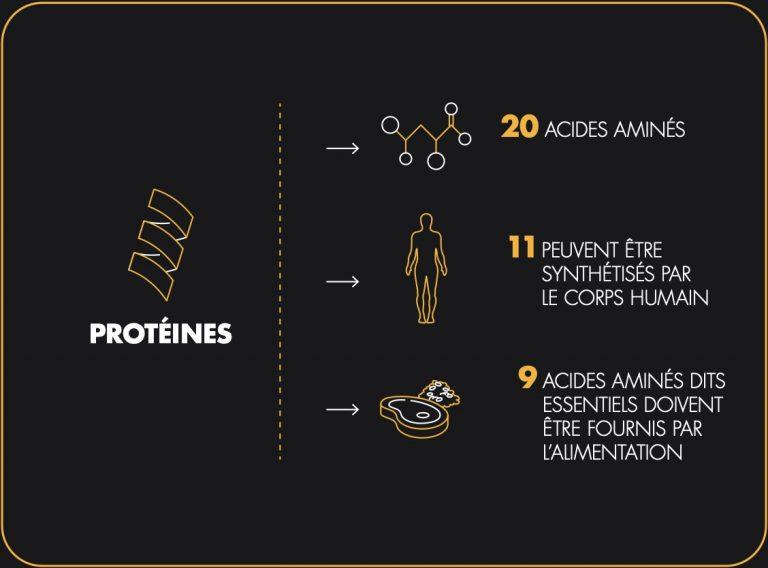 fr-proteines-visuel-03