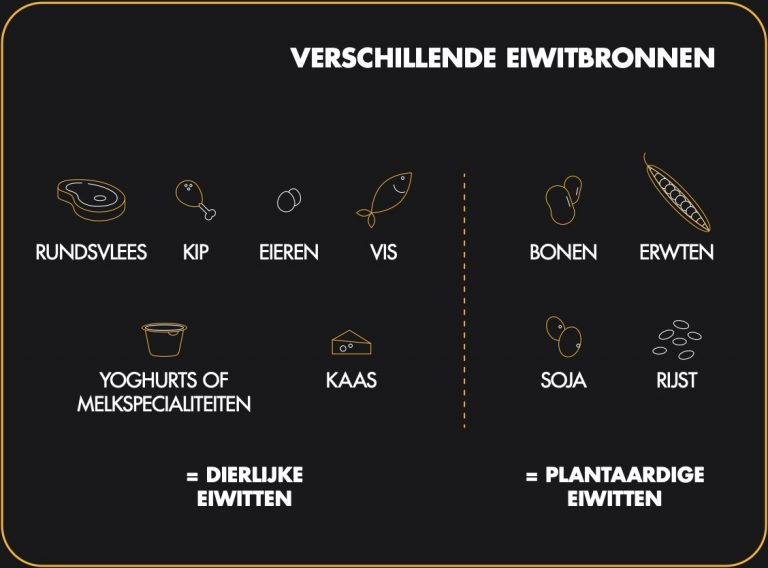 nl-proteines-visuel-01